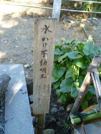 玉鉾神社33.JPG