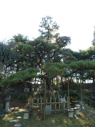 玉鉾神社76.JPG