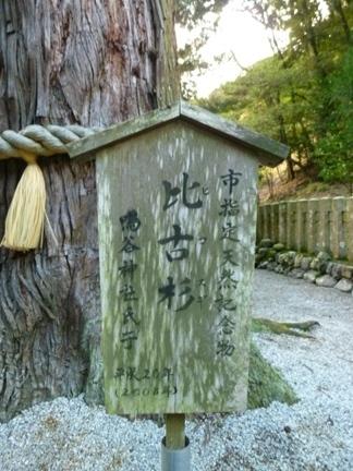 鳴谷神社19.JPG